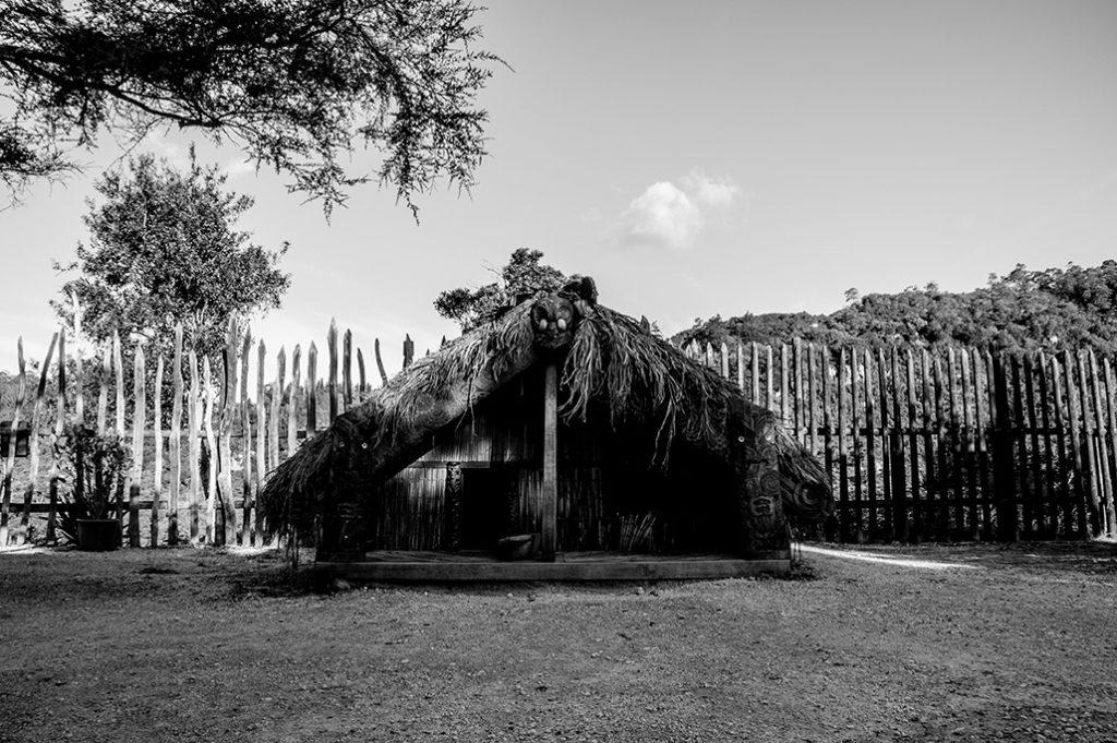 Nouvelle-Zélande - Maison Maorie