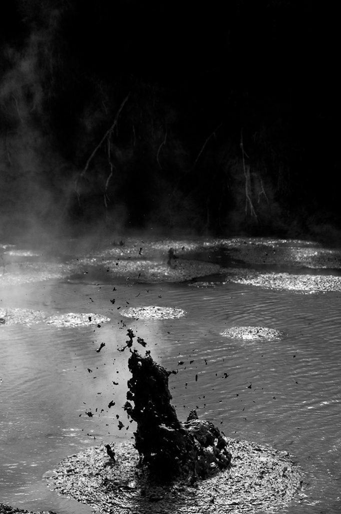 Nouvelle-Zélande - Mud Pool