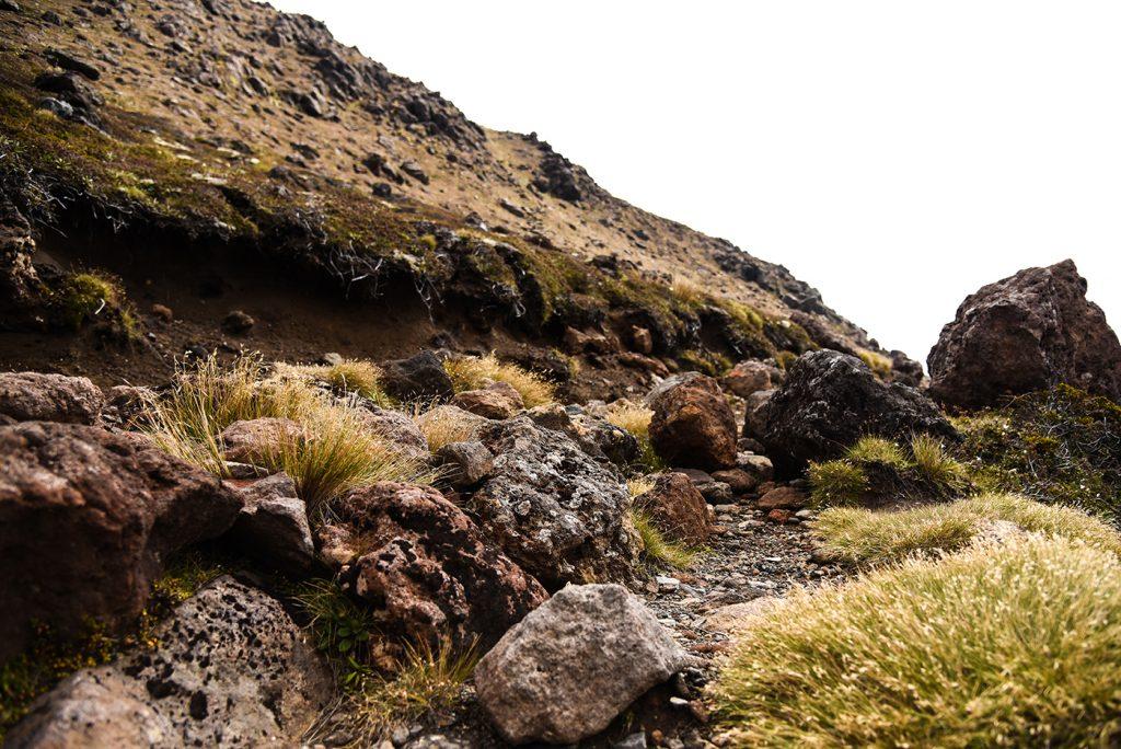 Nouvelle-Zélande - Tongariro Alpine Crossing #3