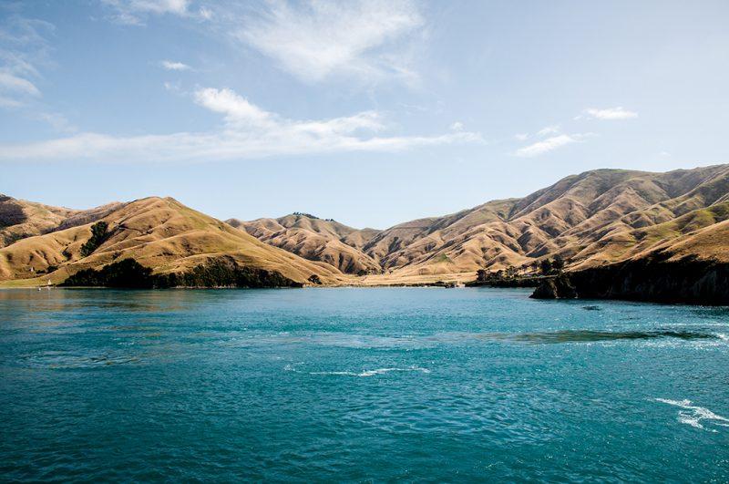 Nouvelle-Zélande - Picton