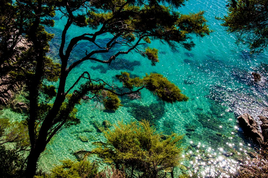 Nouvelle-Zélande - Abel Tasman Sea