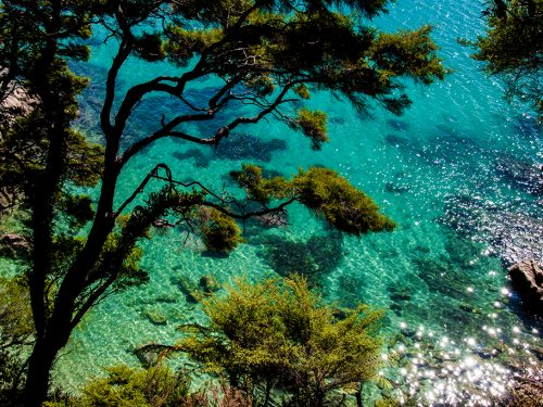 #31 Nouvelle-Zélande – Abel Tasman Sea