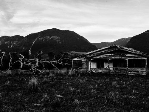#33 Nouvelle-Zélande – Perdu