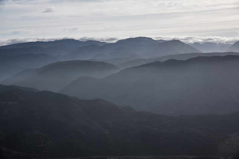 Nouvelle-Zélande - Black Mountains
