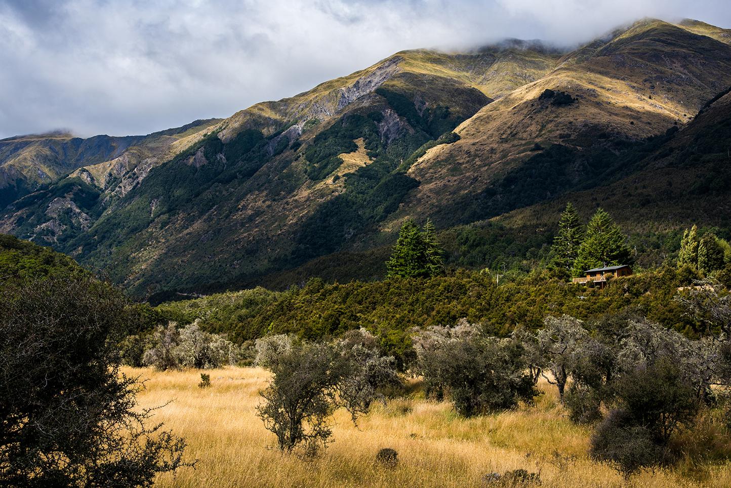 Nouvelle-Zélande - Castle Hill