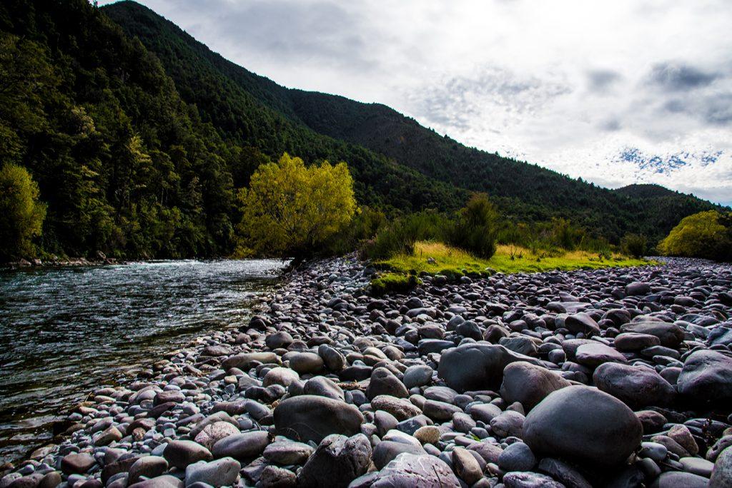 Nouvelle-Zélande - Castle Hill River