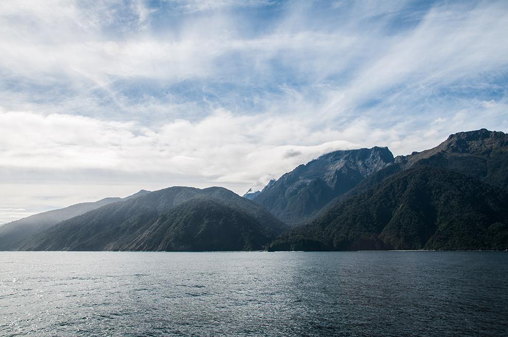 Nouvelle-Zélande - Dale Point #1