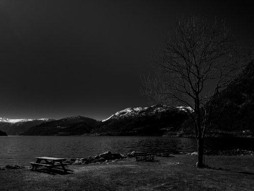 #15 Fjords Norvégien