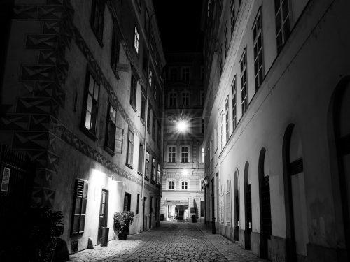 #36 Vienne