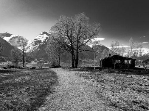 #46 Fjords Norvégien