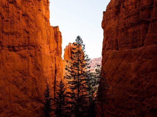 #62 USA – Bryce Canyon NP #9